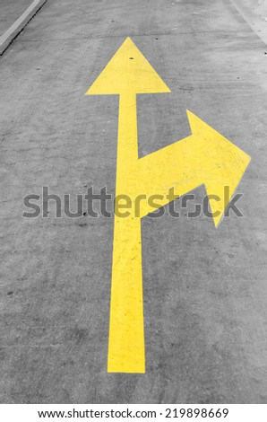 Twin yellow arrow on the road