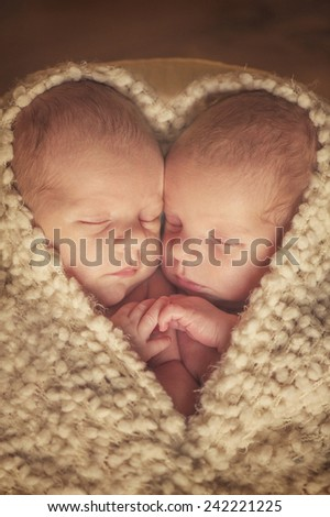 Twins - shape of heart - stock photo