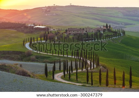 twisted road with cypresses in the sunset in Tuscany - stock photo