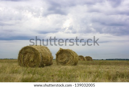 twisted stack of hay on the mown field against a stormy sky - stock photo