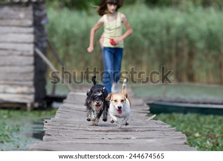 Two adorable dogs and children running on wooden dock on the lake - stock photo