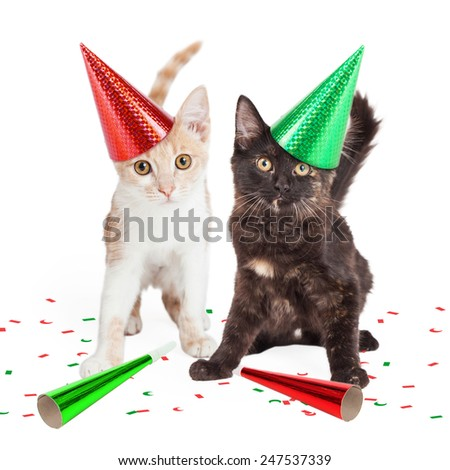 Two adorable little kittens wearing party hats with confetti and noise makers - stock photo
