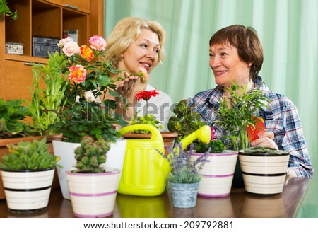 Two aged female friends sitting near table with many flowerpots and gossiping
