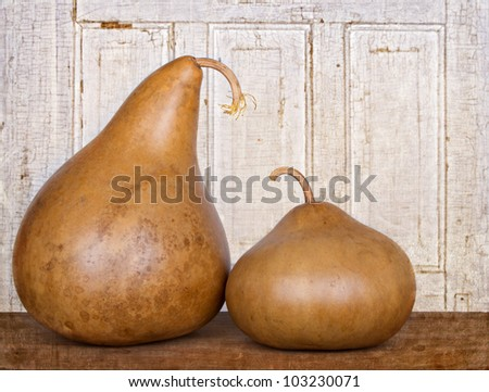 Two amish decorative gourds sitting on wood plank with grunge background
