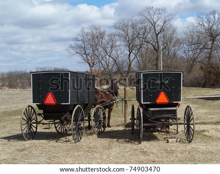 Two Amish Horse and Buggys