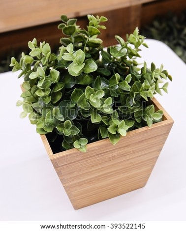 Two Artificial Green Plant or Artificial Plant in A Wooden Pot for Home and Office Decoration without The Care. - stock photo