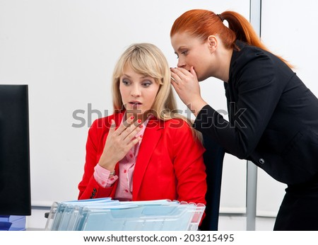two attractive woman business colleagues working in office on computer - stock photo