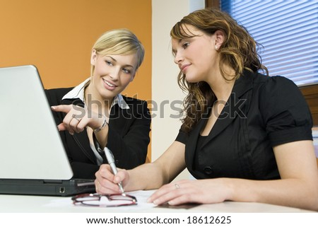 Two attractive young female executives working together on a laptop