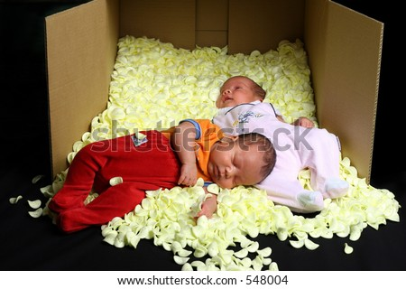 Two babies in soft foam packaging and a box - stock photo