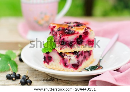 Two Baked Black Currant Pie Squares, copy space for your text - stock photo