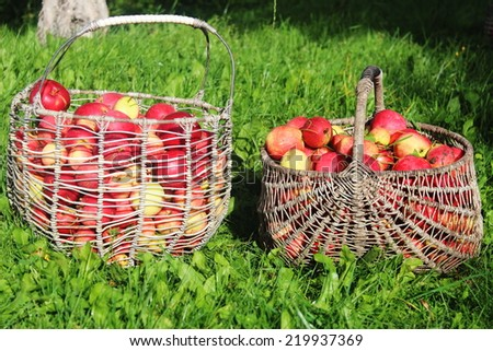 Two baskets full of apples