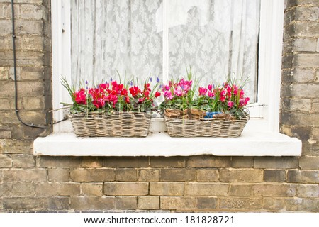 Two baskets on a window containign spring flowers