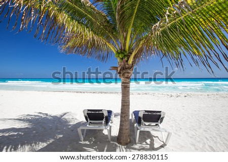 Two beach beds under palm tree on caribbean beachfront  - stock photo