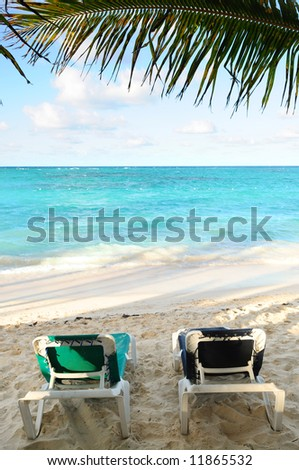Two beach chairs under a palm tree on the ocean shore in tropical resort