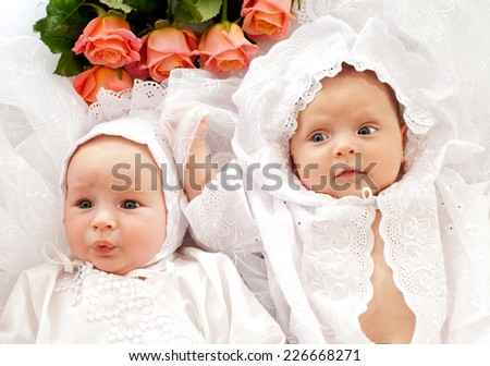 two beautiful baby - stock photo