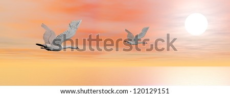 Two beautiful swans flying upon the ocean toward the sun by sunset