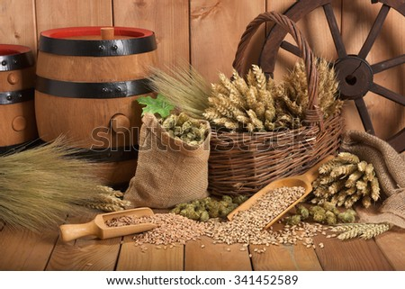 two beer barrels with hops, wheat, grain, barley and malt - stock photo