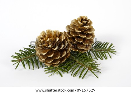 Two big pine cones on the white background - stock photo
