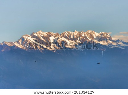 Two birds high snowy mountains background illustration - stock photo