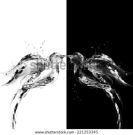 Two birds, one black the other white, made of water kissing. - stock photo