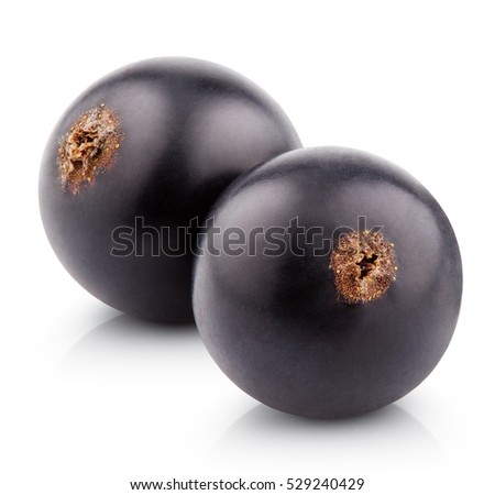 Two black currant berries isolated on white background. Pair of black currants with clipping path