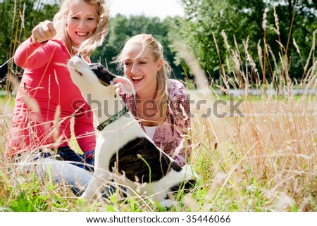 Two blond girls and a american bulldog in the park - stock photo