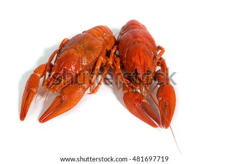 Two Boiled crayfishs on isolate white background