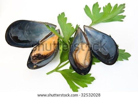 two boiled mussels with parsley isolated on white background - stock photo