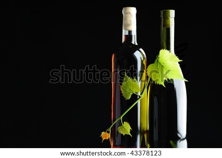 Two bottles wine twined by grapevine on black background