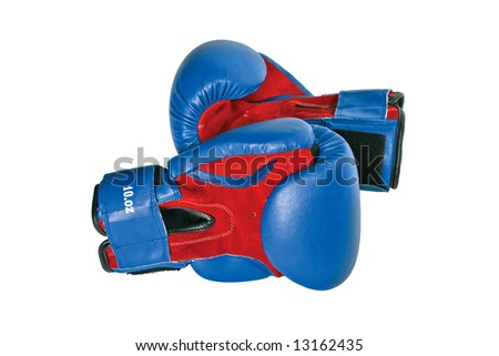 Two boxing gloves