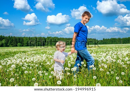 two brothers, small child and teenager  plays on a summer meadow  - stock photo