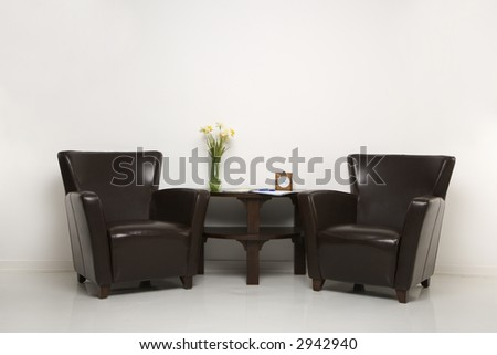 Two brown armchairs and table with daffofils still life.