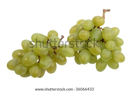 Two bunch of white grape. Close-up. Isolated on white background.
