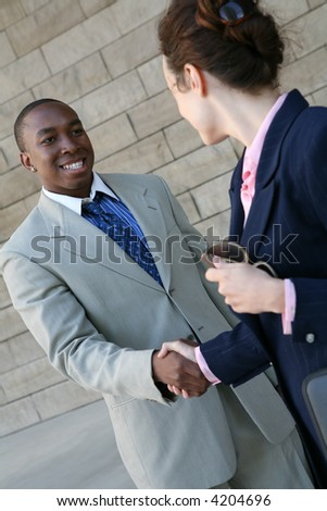 Two business professionals, man and woman, shaking hands