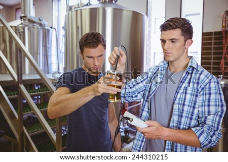 Two casual men testing beer in the factory
