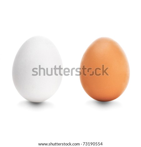 Two chicken egg on white background