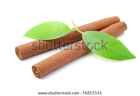 two cigars with leaves on white background - stock photo