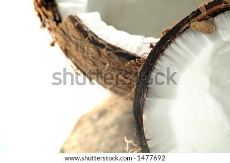 Two coconut detail - stock photo