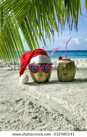 Two coconut in Christmas in the Maldives. - stock photo