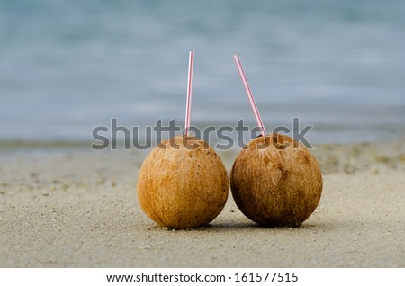 Two coconuts on sandy sea shore of tropical island. Concept photo of couples travel ,tourism, love, relationship, honeymoon.  - stock photo