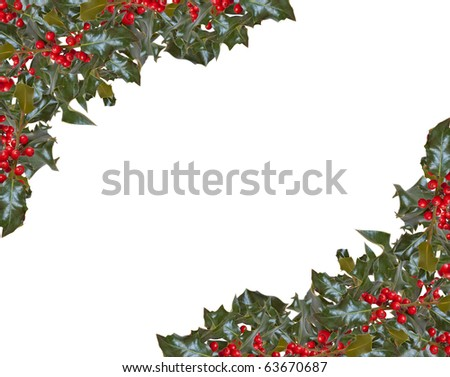 Two corners of holly frame with copy space - stock photo