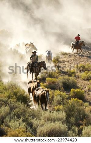 Two cowboys guiding a line of horses through the desert - stock photo