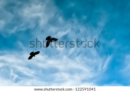Two crow silhouette in the painted blue mountain sky - stock photo