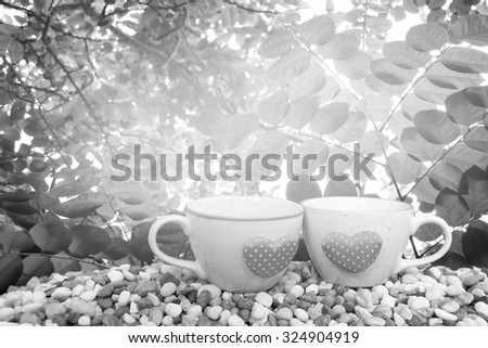 two cups of coffee on pebble ground with leaf on tree ,orange and yellow light background ,black and white tone - stock photo