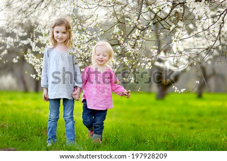 Two cute little sisters in blooming cherry garden - stock photo