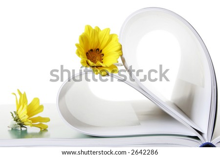 Two daisies with book pages in heart shape