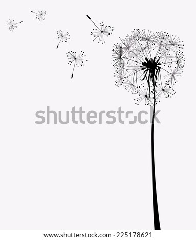 two dandelions in wind on light blue background - stock photo