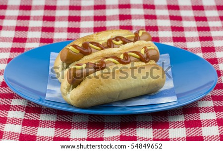 Two delicious hot dogs on a blue plate. - stock photo