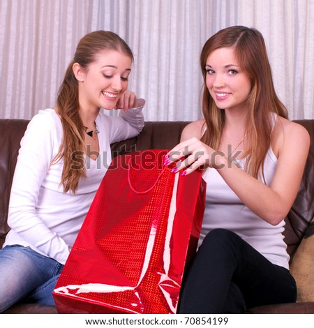 Two delighted women with shopping bag at home sitting on the sofa - stock photo