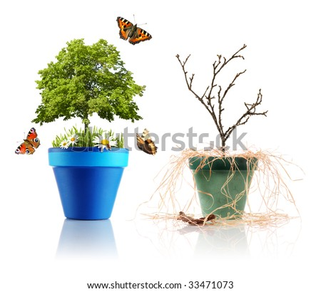 Two different environments - stock photo